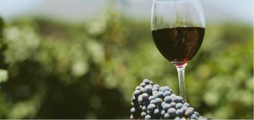 Georgia Ranked 17th in the List of Largest Wine Exporting Countries