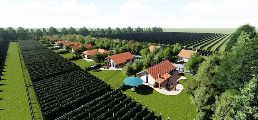 Construction of Wine Village Started in Kvareli
